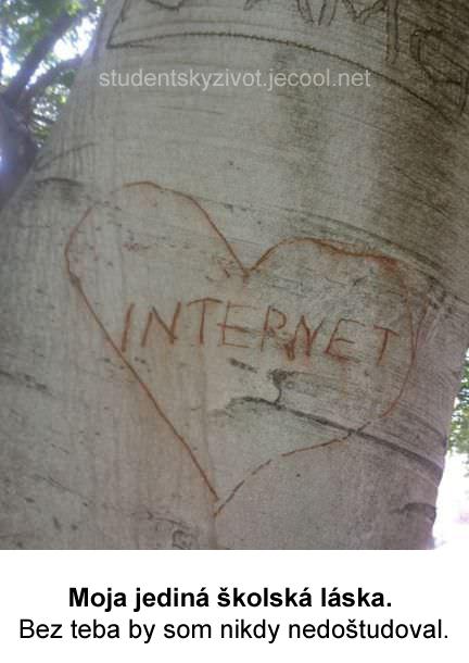 Bez teba by som nikdy nedoštudoval. I Love you my sweet internet.